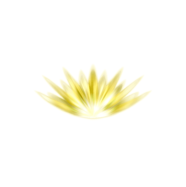 chakra 12 luz del alma